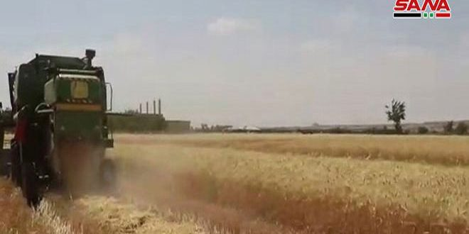 Haseke Çiftçilerine 12 Milyar Havale Edildi