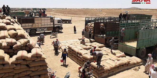 Haseke Çiftçilerine Ödemeler Devam Ediyor