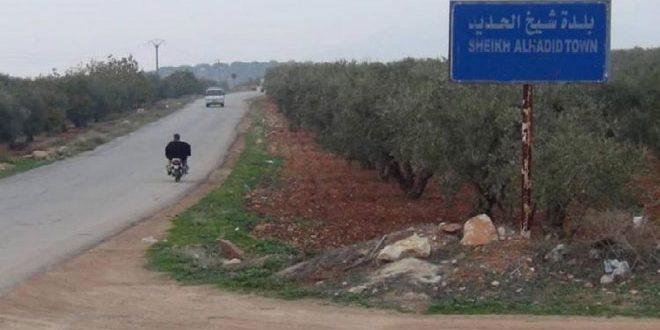 Türk İşgalinin Kiralıkları Halep Kırsalında Birkaç Tarım Arazi ve Eve El Koydu