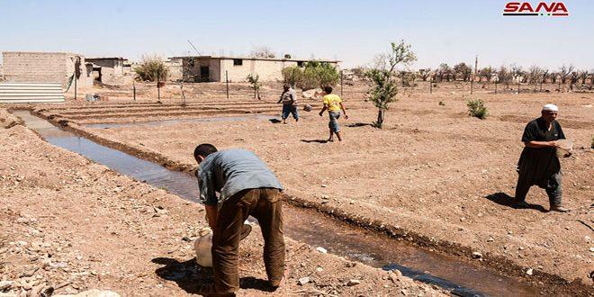 الخدمات تعود تدريجياً إلى يلدا ومزارعوها يراهنون على أرضهم الخصبة