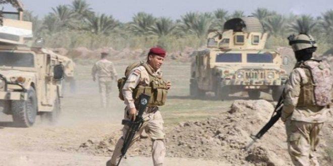 القوات العراقية تحبط محاولة تسلل لإرهابيي داعش جنوب سامراء
