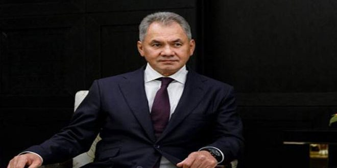 وزير الدفاع الروسي يبحث مع وزير دفاع النظام التركي الوضع في سورية