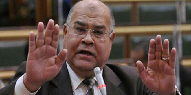 سياسي مصري: سورية راية صمود الأمة العربية وعنوان انتصاراتها