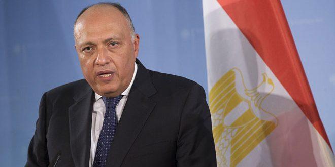شكري: مصر تقف دائماً مع استقرار وسيادة سورية