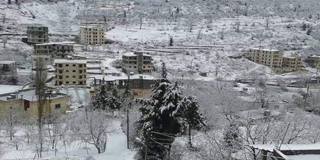 الثلوج في صلنفة (صور)
