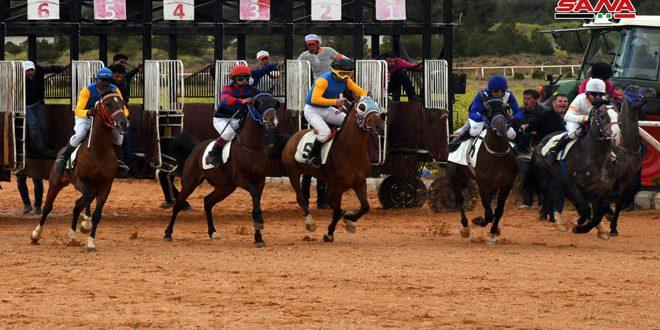 سباق للخيول العربية الأصيلة ضمن مهرجان الشام الدولي للجواد العربي