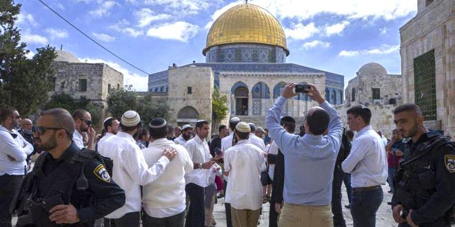 مستوطنون يجددون اقتحام المسجد الأقصى بحماية قوات الاحتلال