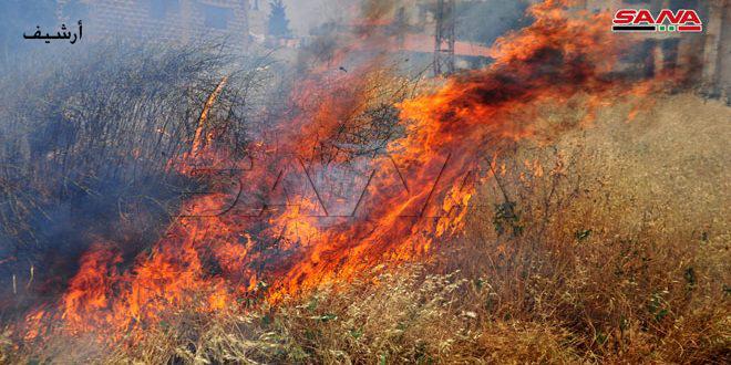 إخماد ستة حرائق بريف طرطوس