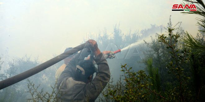 إخماد جميع الحرائق في محافظة اللاذقية والعمل يتم على تبريدها ومراقبتها