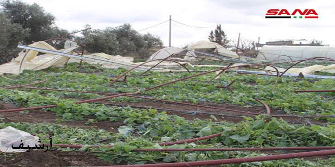 528 مليون ليرة تعويضات لأكثر من 9 آلاف مزارع في الغاب وريف دمشق ودير الزور