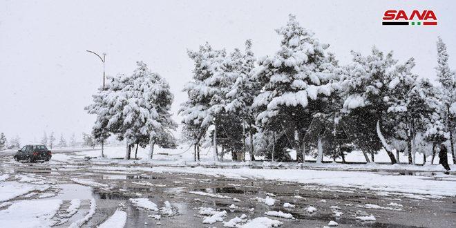الطقس غداً.. أجواء شديدة البرودة ليلاً وتحذيرات من الصقيع والجليد