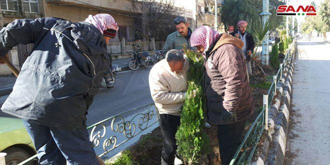 إعادة تأهيل المنصفات العامة والحدائق في مركز مدينة الحسكة