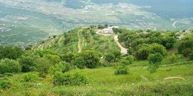 كاف الجاع.. قرية الينابيع التي تتلألأ بين جبال الساحل