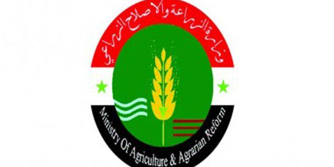 الزراعة: أساليب جديدة للمكافحة الحشرية تحقق السلامة الغذائية والبيئية