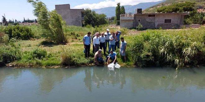 مشروع المزارع السمكية.. توزيع دفعة من إصبعيات السمك على عشرات المستفيدين في الغاب مجاناً