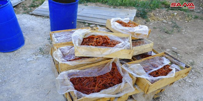 ضبط مواد منتهية الصلاحية في معمل لإنتاج المربيات وقمر الدين في المليحة
