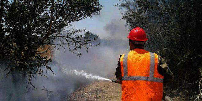 إخماد حريقين نشبا في أشجار حراجية وأعشاب يابسة في حمص