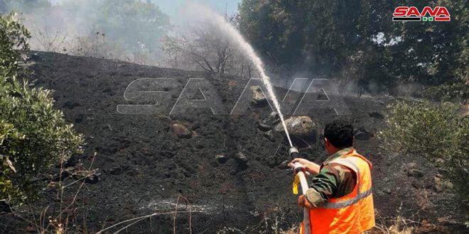 إخماد حريق طال نحو 300 دونم من الأشجار المثمرة بريف حمص