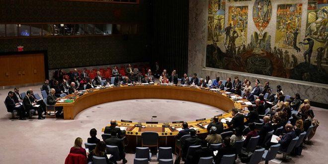 مجلس الأمن يصوت ضد مشروع قرار روسي حول إيصال المساعدات الإنسانية إلى سورية