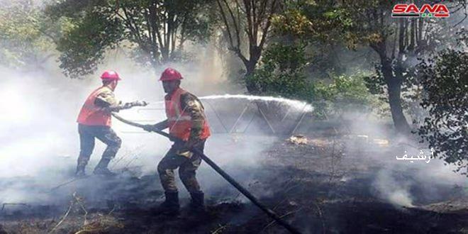 إخماد حريق أشجار وأعشاب على طريق حمص دمشق