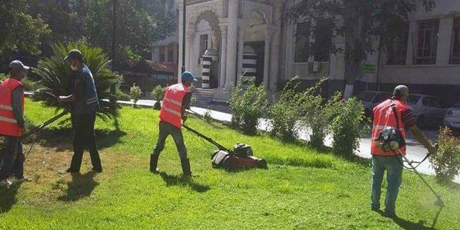 صيانة عدد من الحدائق في مدينة حمص