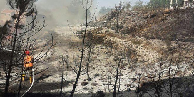 إخماد ثلاثة حرائق طالت أشجاراً حراجية بريف حمص الغربي