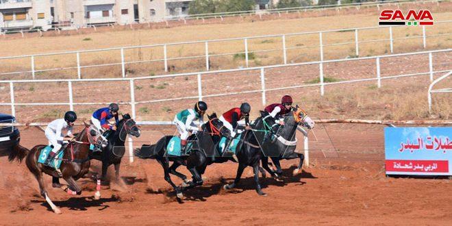 اختتام منافسات السباق الدوري الخامس للخيول العربية الأصيلة بحماة
