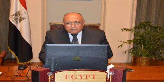 مصر تؤكد رفضها الاحتلال التركي لأجزاء من الأراضي السورية