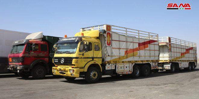 12719 طناً من المواد الزراعية تعبر مركز نصيب الحدودي منذ إعادة افتتاحه