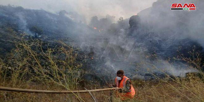 فرق الإطفاء تسيطر على الحريق الذي نشب بالقرب من بلدة الناصرة بريف تلكلخ