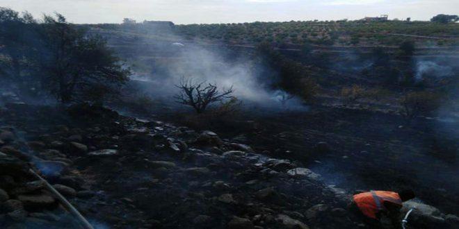 إخماد حريقين بمنطقة ظهر الجبل وقرية الأصلحة بالسويداء