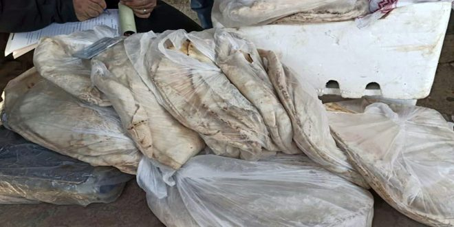 تنظيم 10 ضبوط تموينية بدير الزور وإغلاق محل لبيع وتصنيع الحلويات باللاذقية