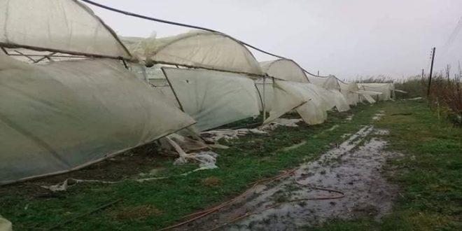 أضرار في البيوت المحمية والشبكة الكهربائية بطرطوس جراء العاصفة المطرية