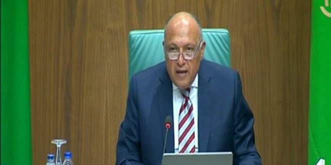 شكري: سورية دولة مهمة في صون الأمن القومي العربي
