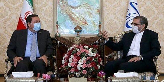 مجلس الشورى الإسلامي الإيراني يدين العدوان الإسرائيلي على محيط دمشق