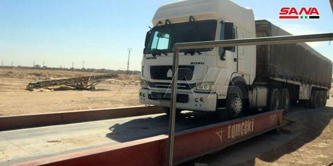 دير الزور… الانتهاء من كل الاستعدادات لاستلام محصول القمح
