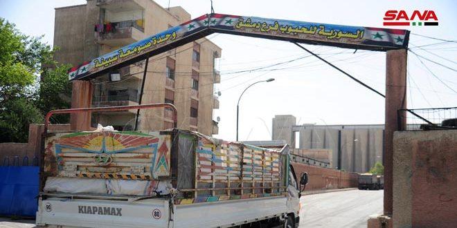 تعرف على المراحل التي تسبق دخول القمح إلى خلايا التخزين في صومعة السبينة بريف دمشق
