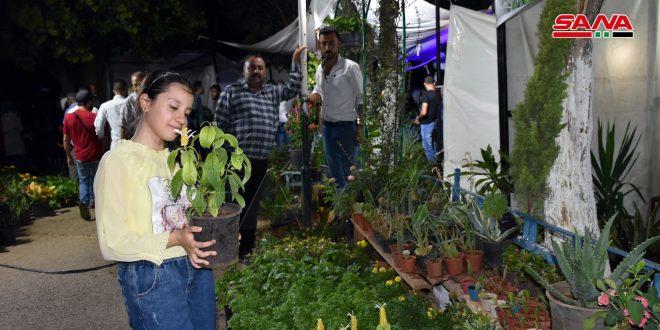 بالصور.. معرض أزهار حماة المركزي في حديقة أم الحسن