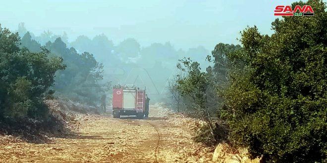 فرق الإطفاء تواصل إخماد الحريق الذي امتد من الأراضي اللبنانية نحو أطراف قرية أكوم بمنطقة القصير