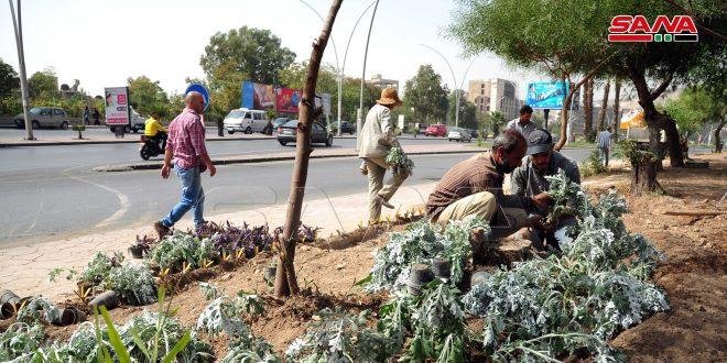 محافظة دمشق: زيادة المسطحات الخضراء وتجهيز حديقة صديقة للبيئة