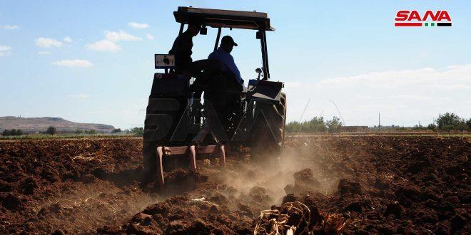 مزارعو سعسع يبدؤون تجهيز أراضيهم للزراعة الشتوية
